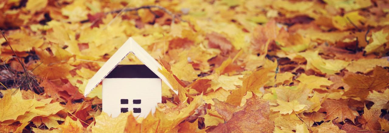 model home among autumn leaves